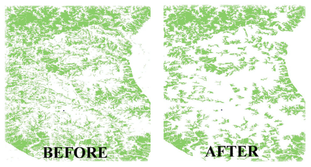 Before and after views of deleting small areas from vegetation polygons.